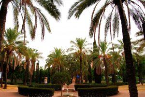 Parque-de-la-Buhaira